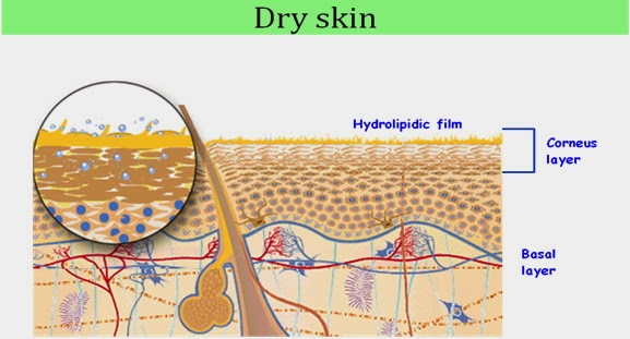 Pristiano Madrid Having Problem with Dry Skin try use Olive Oil