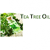 How To Seborrheic Dermatitis From Tea Tree Oil?
