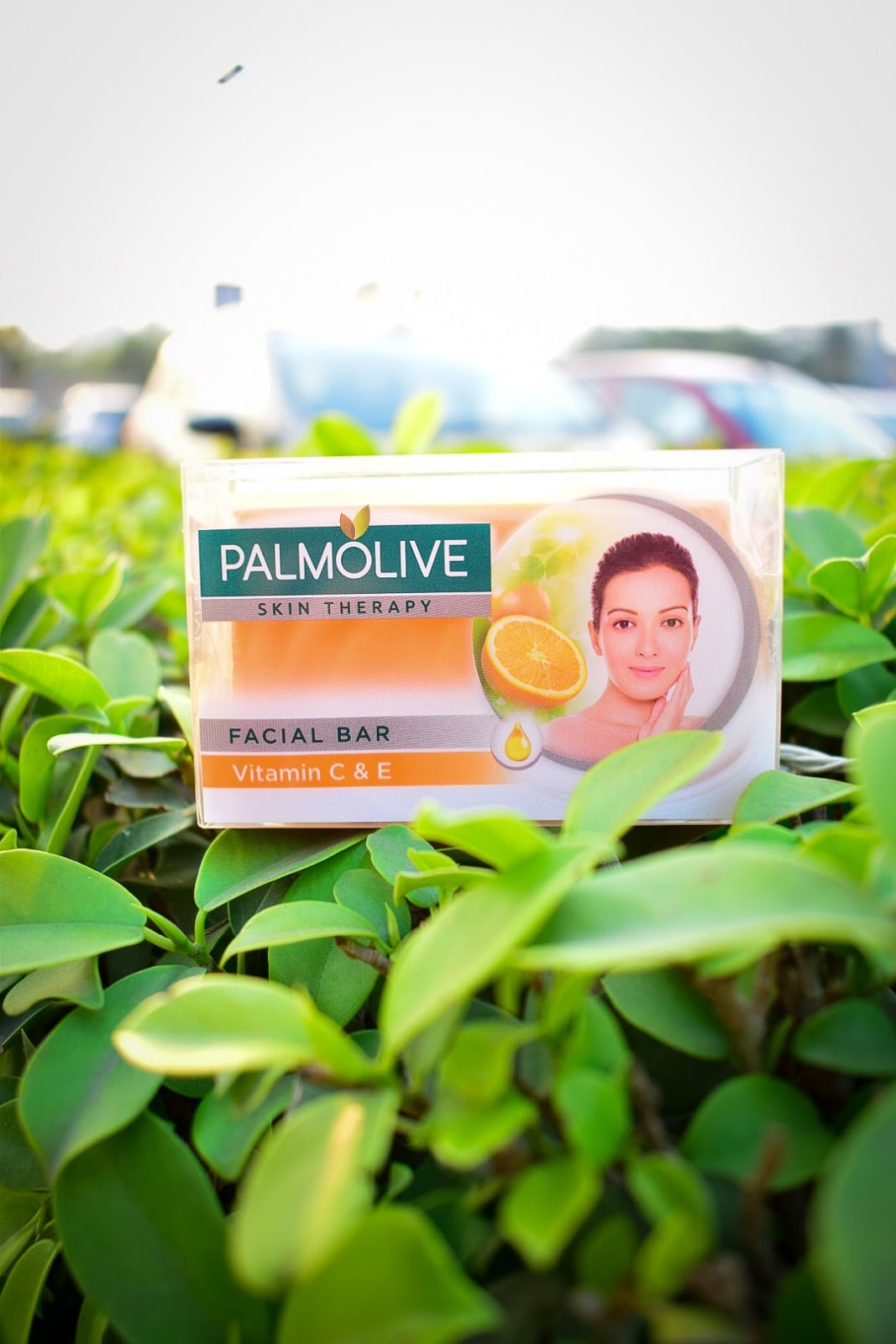 Palmolive Skin Therapy Soap Bar