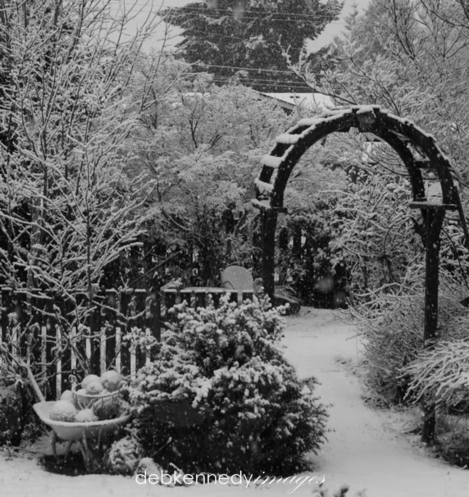 A Black & White Winter Garden HomewardFOUND Decor