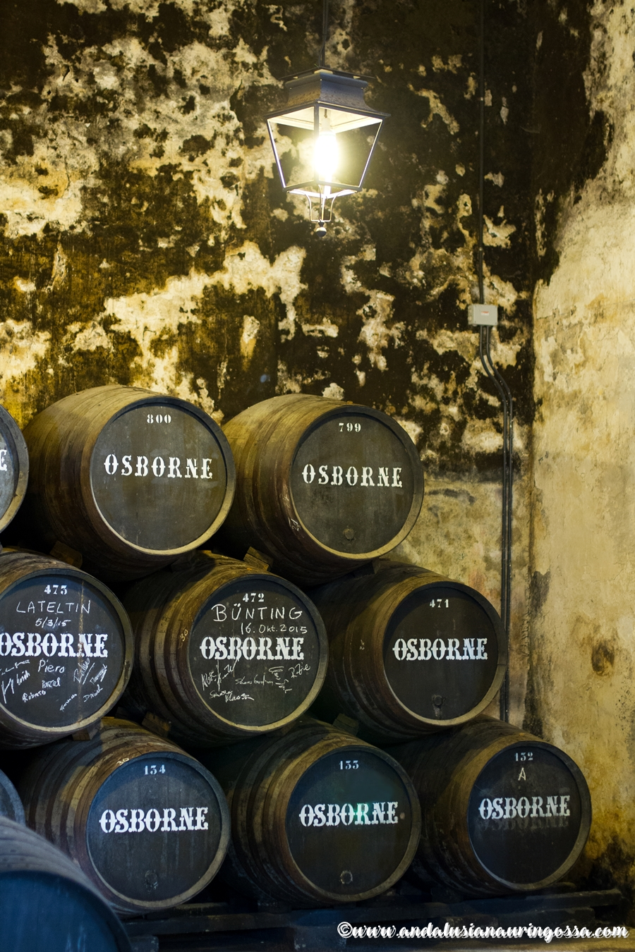 Andalusian auringossa_ruokablogi_viiniblogi_matkablogi_Osborne_sherry_El Puerto de Santa Maria