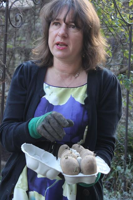 Zia Mays  The Secret Garden Club