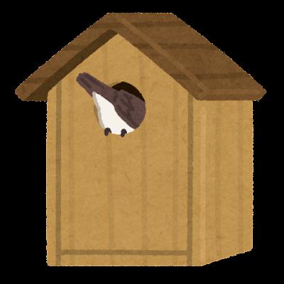 巣箱に入る小鳥のイラスト