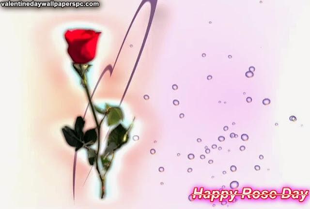 Rose Day Red Rose Wallpaper