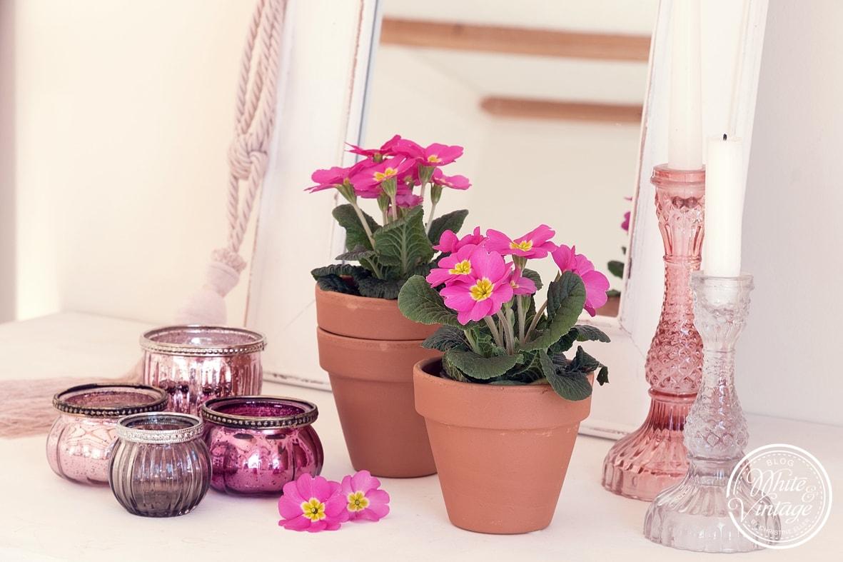Deko für den Frühling in rosa.