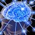 बुधि वर्धक और मस्तिष्क को शक्तिशाली बनाये -