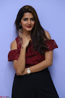 Pavani Gangireddy in Cute Black Skirt Maroon Top at 9 Movie Teaser Launch 5th May 2017  Exclusive 090.JPG