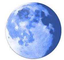 Pale Moon 26.1.0 Latest Version 2016