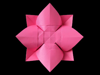 Origami Fiore bombato, retro - Curved flower, back, by Francesco Guarnieri