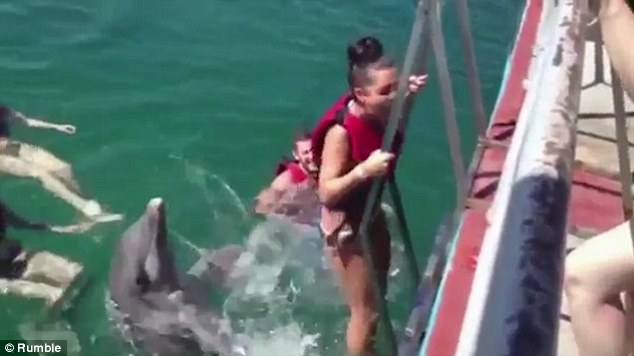 A Naughty Dolphin Doesn't Want This Beautiful Lady To Leave So He Decided To Stick IT Inside Her!