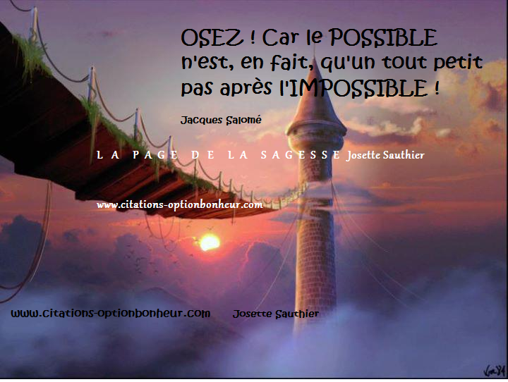 Impossible Sagesse - Jacques Schlanger