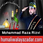 http://www.humaliwalayazadar.com/2016/09/syed-mohammad-raza-rizvi-nohay-2017.html