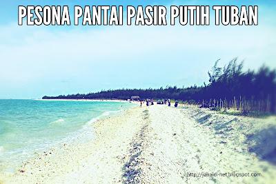 Pesona Wisata Pantai Pasir Putih Tuban