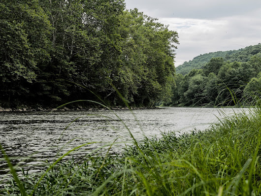 Along the Youghiogheny River