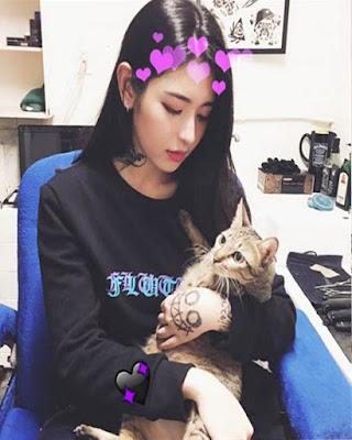 foto tumblr con gato