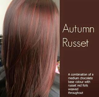Hair By Season Dark Autumn