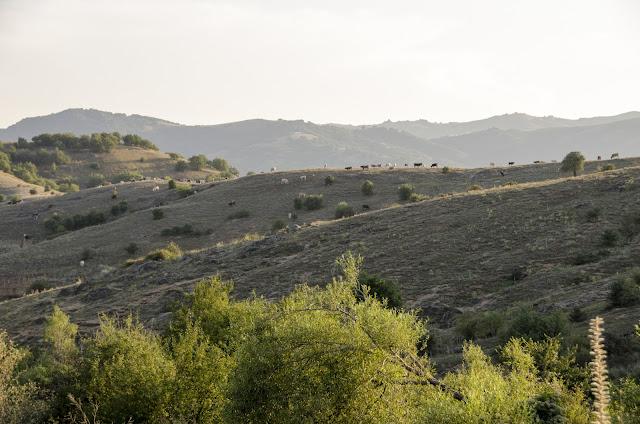 Во близина на село Груниште, Мариово
