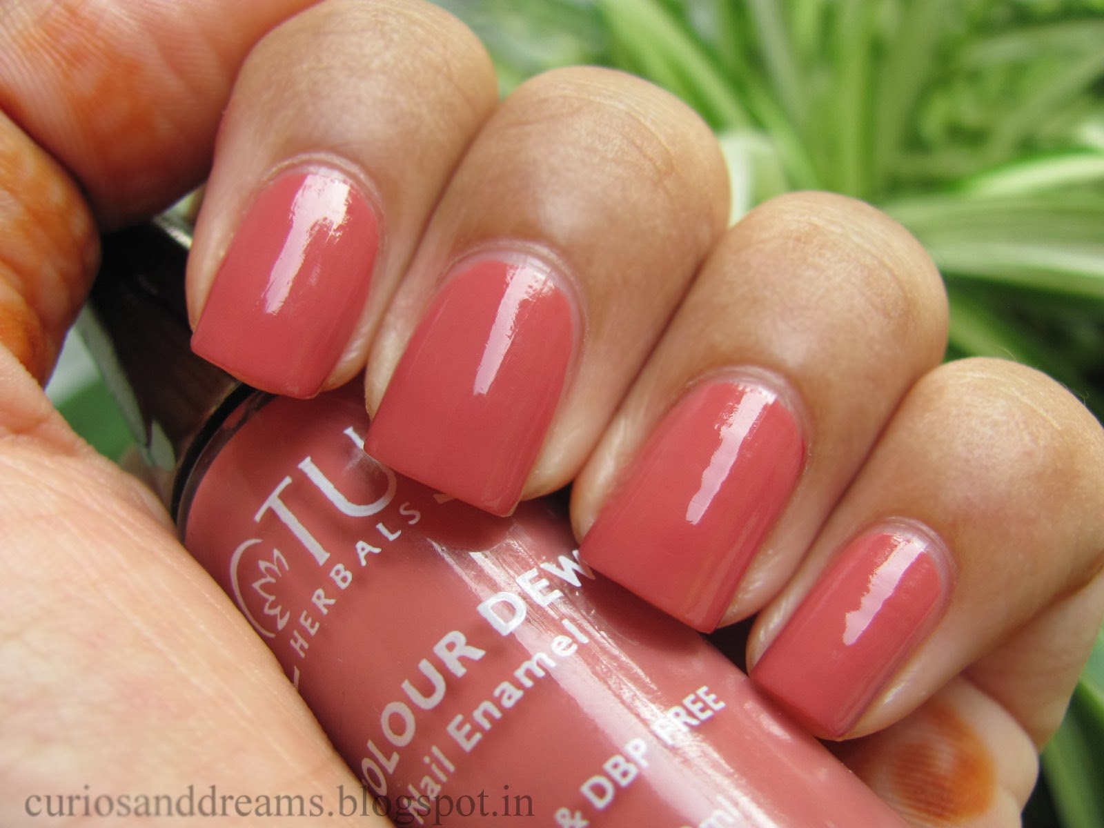 Lotus Nail Polish Candy Drop Review Swatch