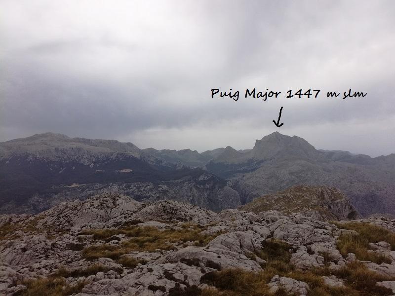 El Puig Major visto dal en Puig Roig