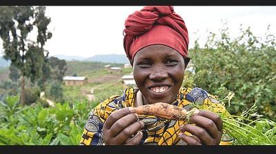 Carotte cultivée dans le cadre de la banque alimentaire (Flickr)