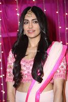 Adaa Sharma in White Pink Saree at Zee Telugu Apsara Awards 2017 21.JPG