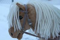 http://kaarenblogi.blogspot.fi/p/jaakristalli.html