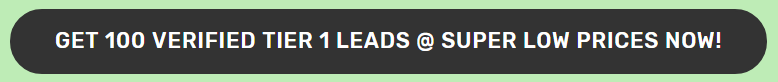 Get 100 Verified Leads Straight To Your Autoresponder