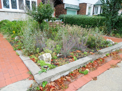 Toronto Gardening Services Midtown Toronto Fall Garden Cleanup before by Paul Jung Gardening Services