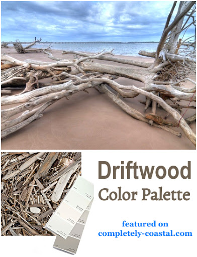 Driftwood Color Scheme Room Paint Palette