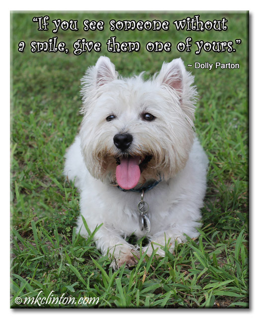 """If you see someone without a smile"" quote and a photo of Pierre Westie smiling"