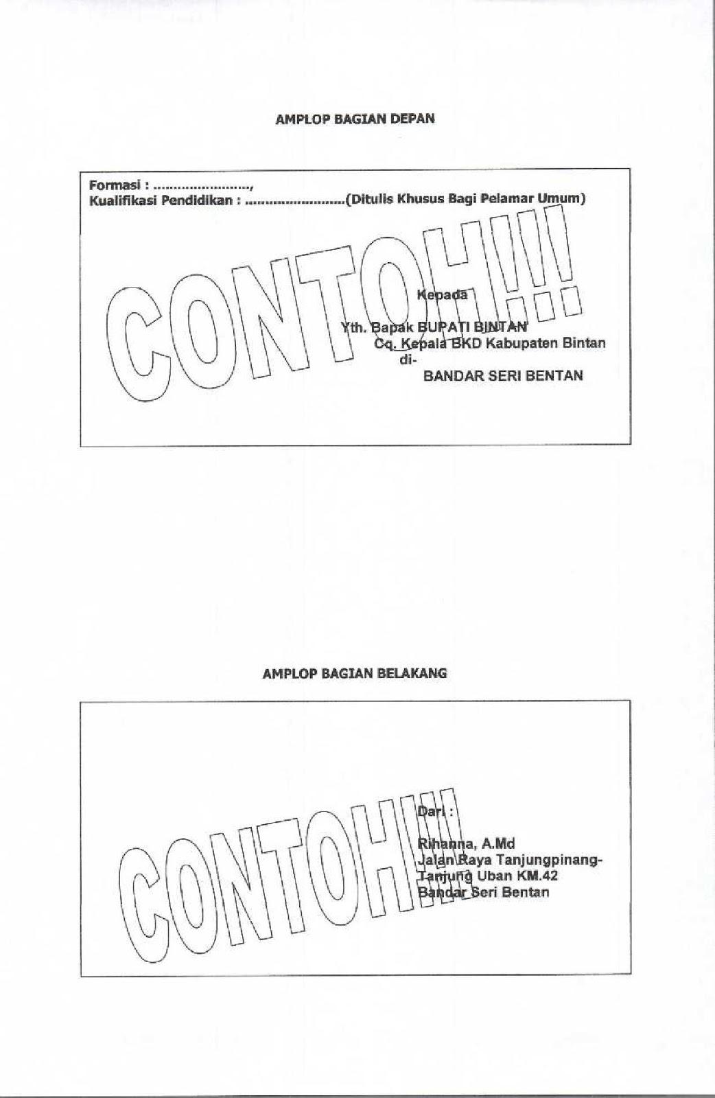 Lowongan (Dokter, Perawat, Bidan, dll) PTT/Honorer di Kab