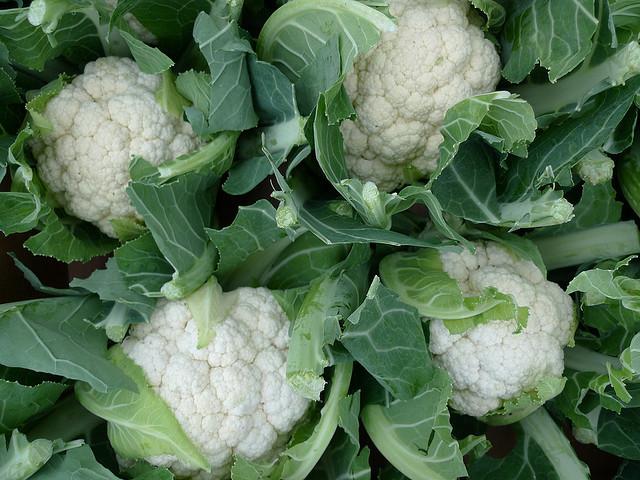 Cách trồng Súp lơ & trồng bông cải tại nhà