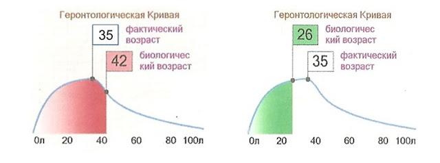 ПОГРАНИЧНАЯ_ВОДА_Механизм_действия