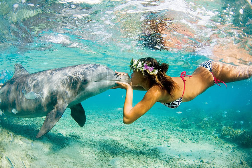 Travel Expectations Vs Reality (20+ Pics) - Swimming With Dolphins