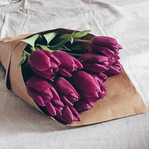 أجمل الصور الرومانسية السعيدة هذا العام - الجزء الثاني