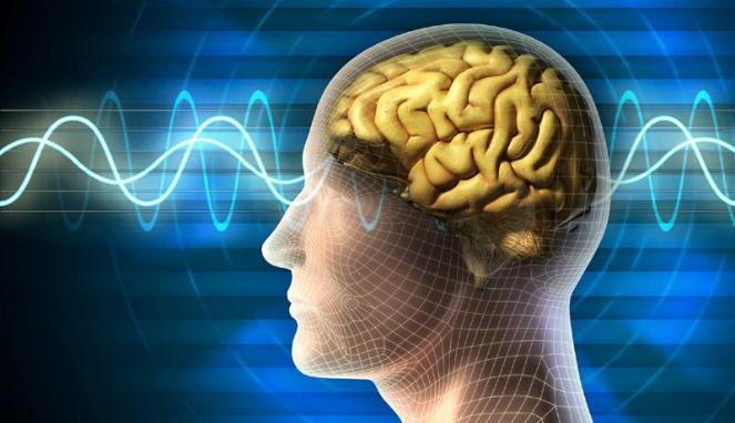 Gamma Binaural Beats - Vibration Law Vol  4 - SCIENCE