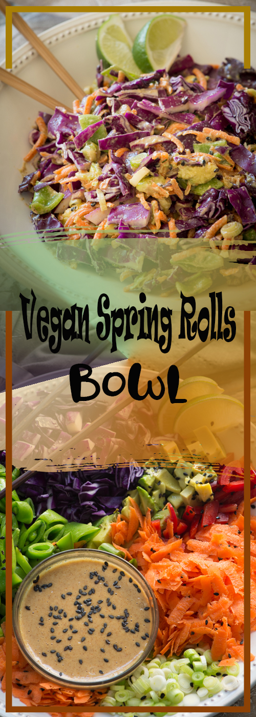 Raw Vegan Spring Rolls Bowl Recipe