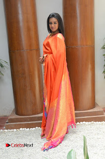 Actress Catherine Tresa Latest Pictures in Silk Saree  0088