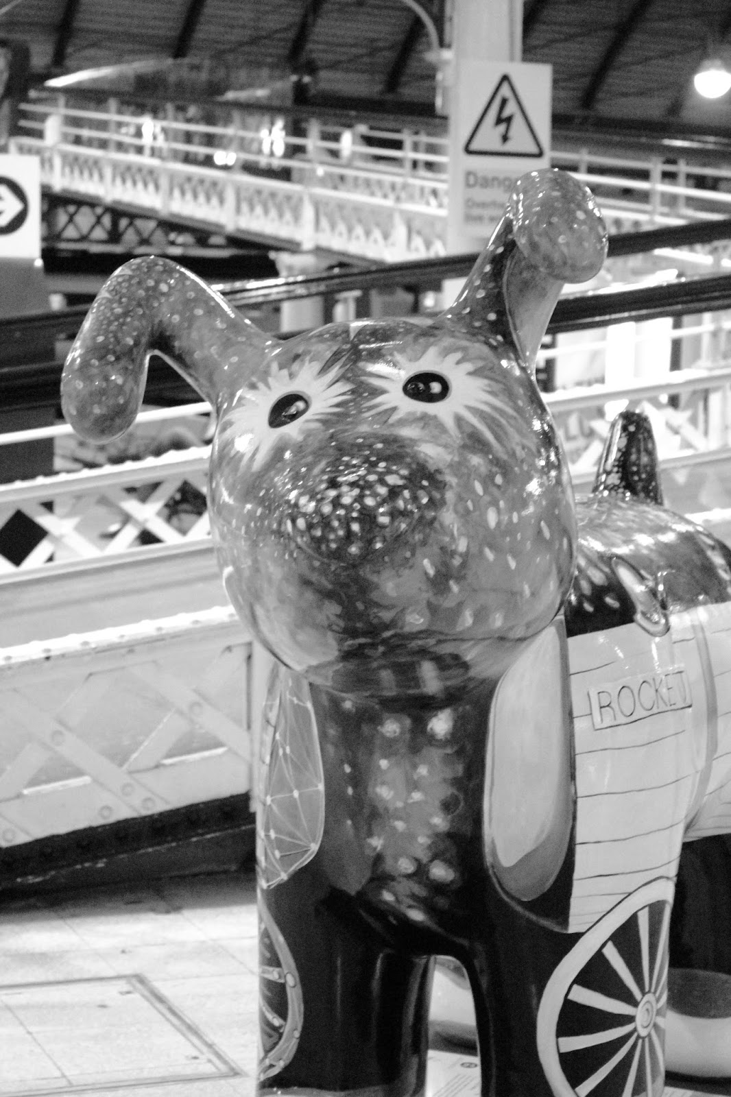 great north snowdogs Newcastle train station