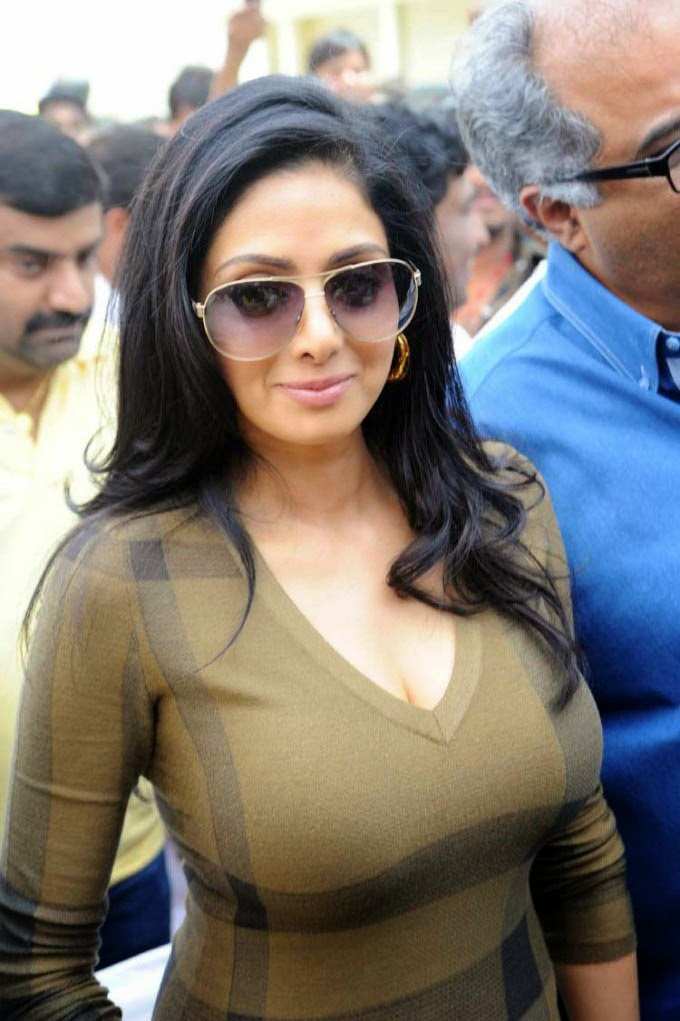 Bollywood  Hollywood Images Sridevi Hot Images-5840