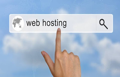 Informacion sobre web hosting profesional