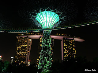 BOSQUE ARTIFICIAL. SINGAPUR
