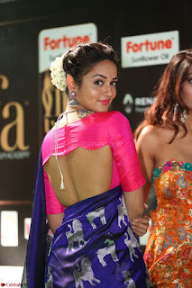 Shanvi Looks Super Cute in Pink Backless Choli Blue Saree at IIFA Utsavam Awards 2017 46.JPG