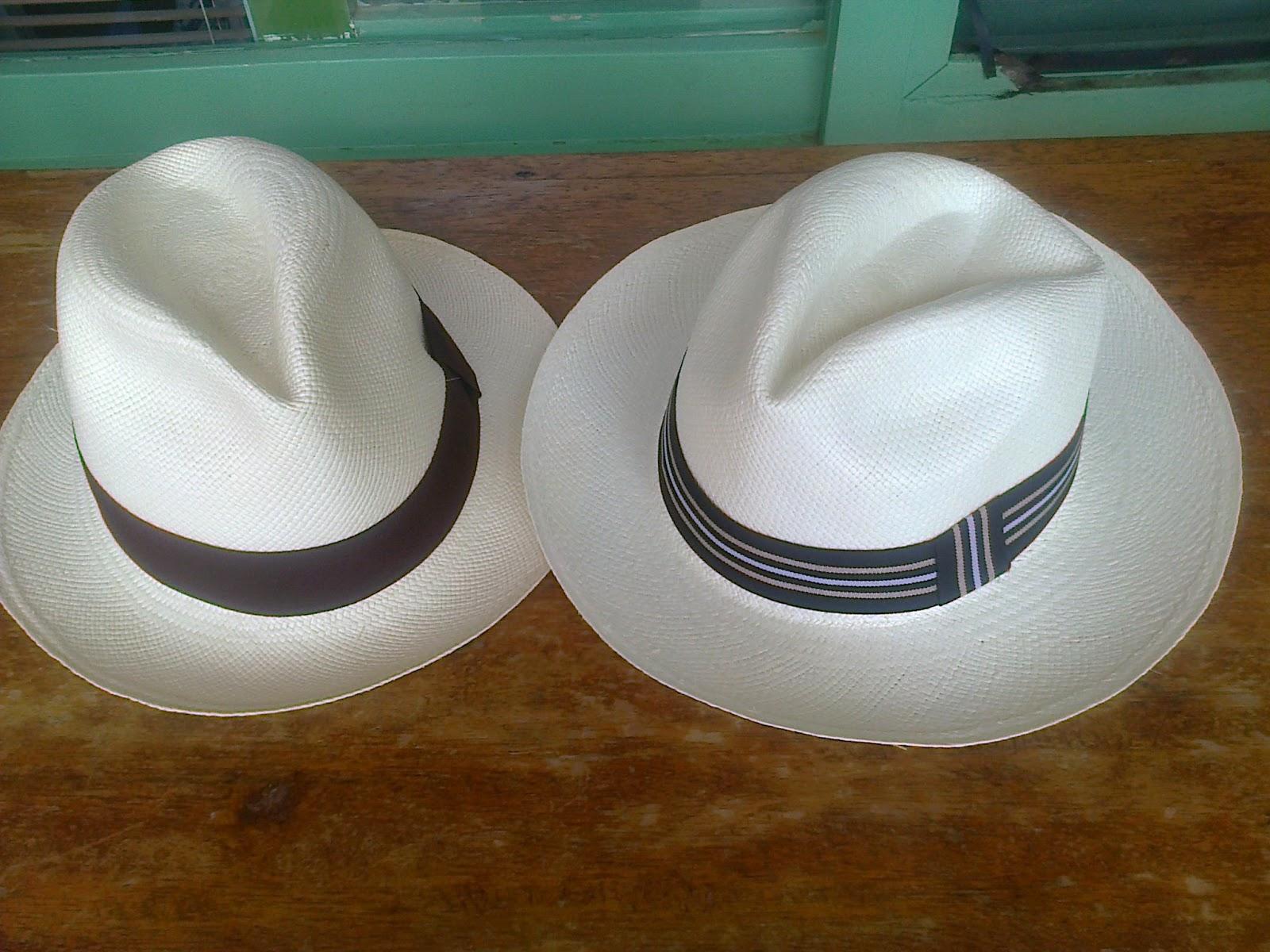Sombrero peruano en peligro de extincion jpg 1600x1200 Sombrero norteno 9c361e0ddc9