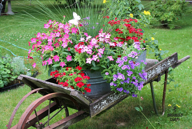 Galvanized Laundry Tub Planter Ideas #containergarden #annuals #junkgarden #gardenjunk