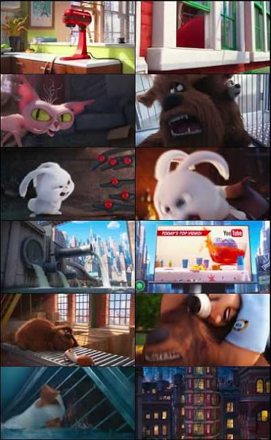 The Secret Life of Pets (2016) Tamil Dubbed Download 200mb BluRay