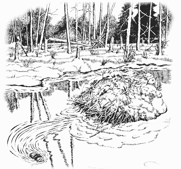 Images Of Coloring Pages Lakes Rivers And Streams Lake