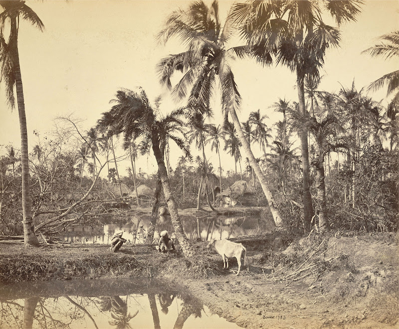 Village in Rural Bengal - 1865