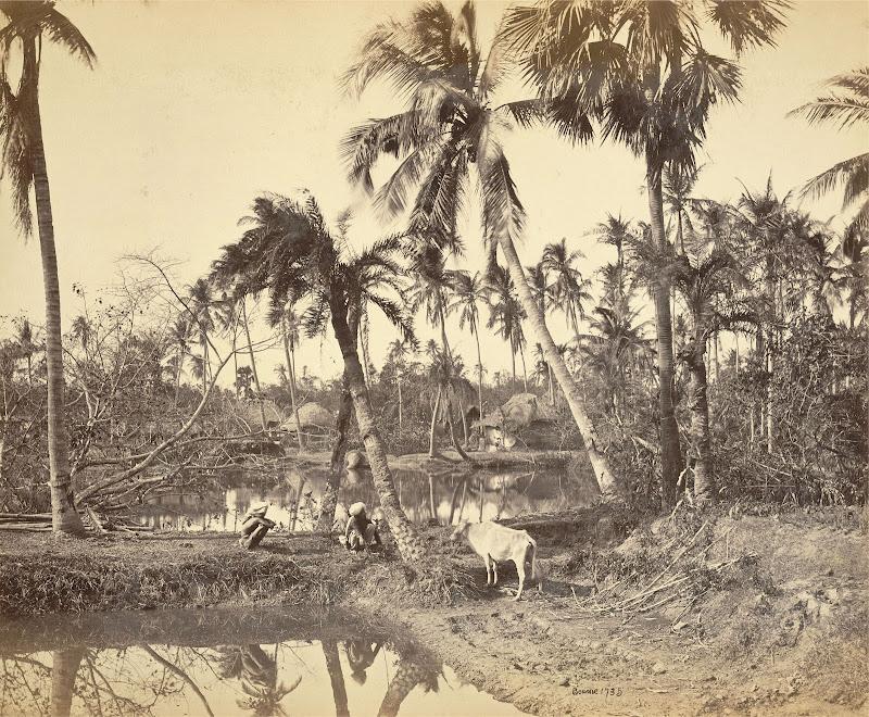 Village in Rural Bengal - 1865