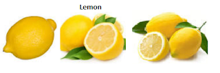 Lemon Fruit name in English, Hindi, Marathi Gujarati, Tamil, Telugu etc